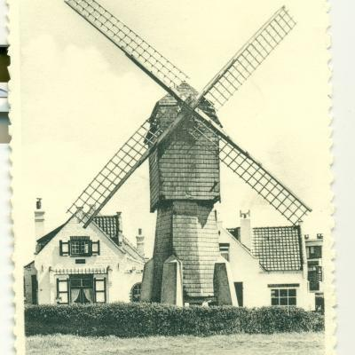 Wenduine: le moulin